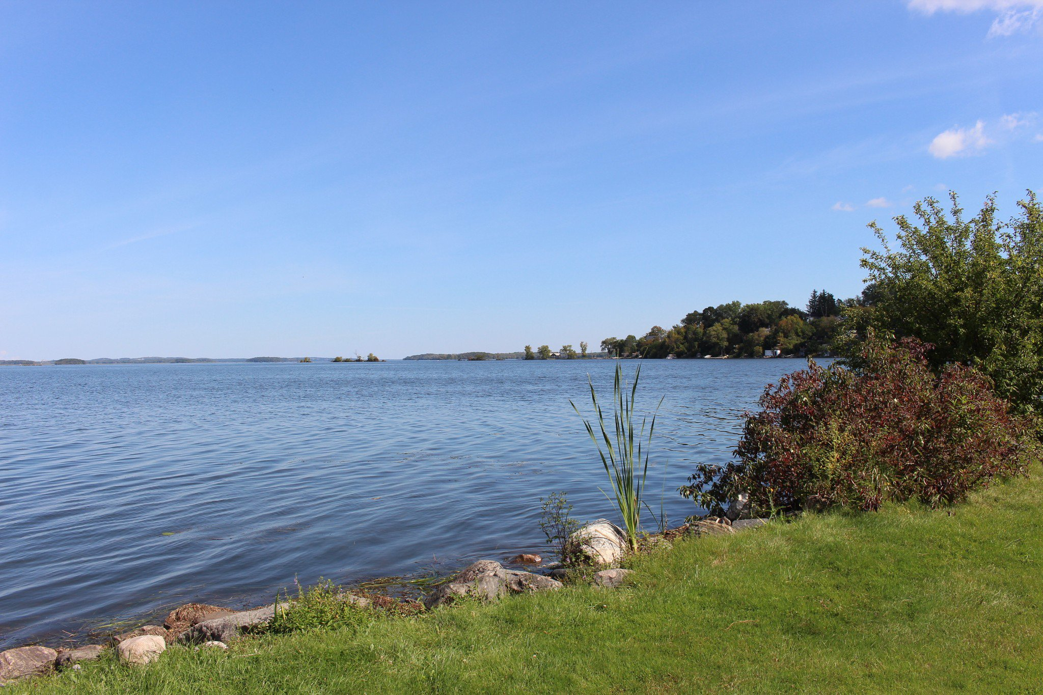 Photo 16: Photos: 6010 Rice Lake Scenic Drive in Harwood: Other for sale : MLS®# 223405