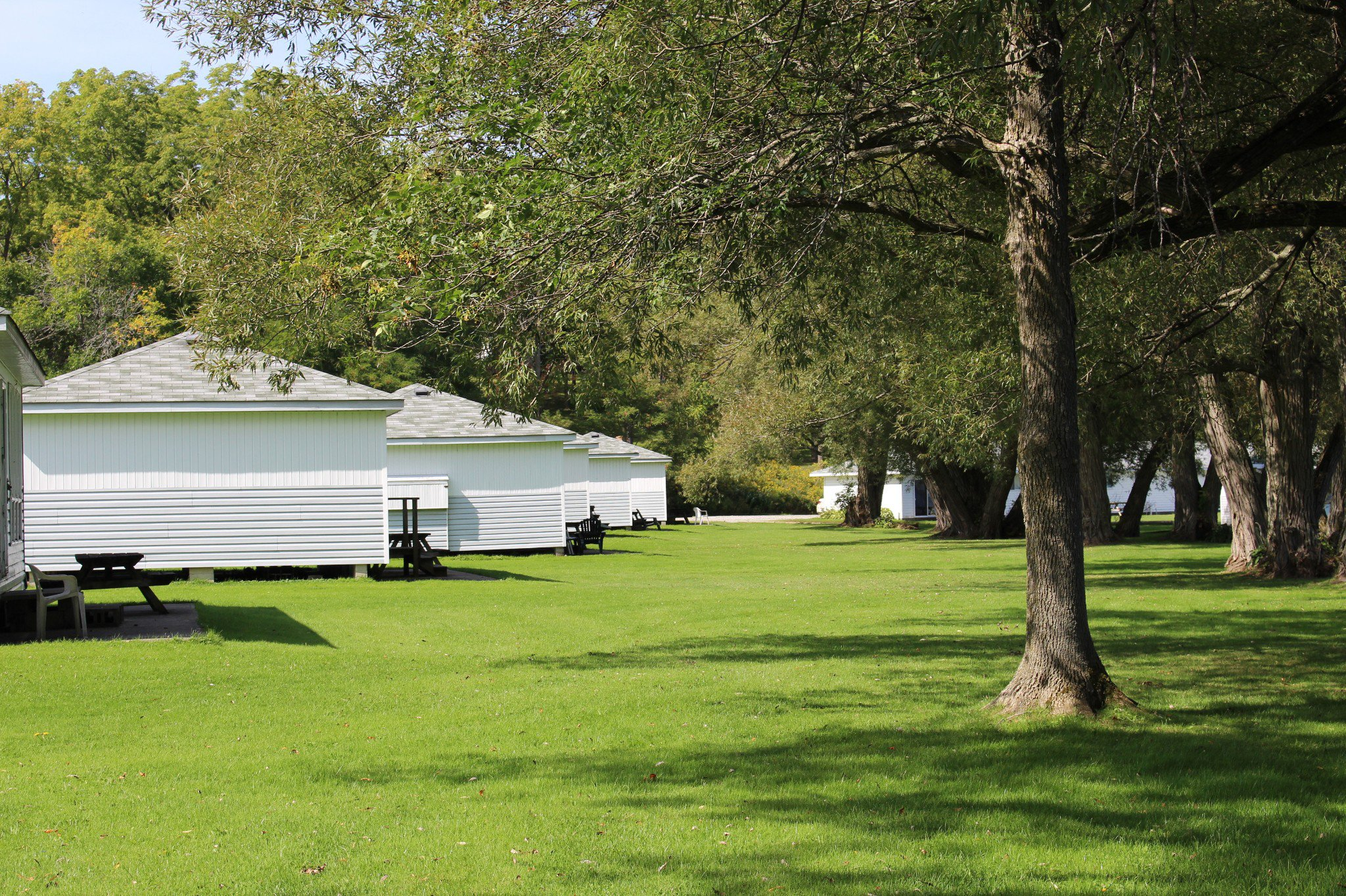 Photo 25: Photos: 6010 Rice Lake Scenic Drive in Harwood: Other for sale : MLS®# 223405
