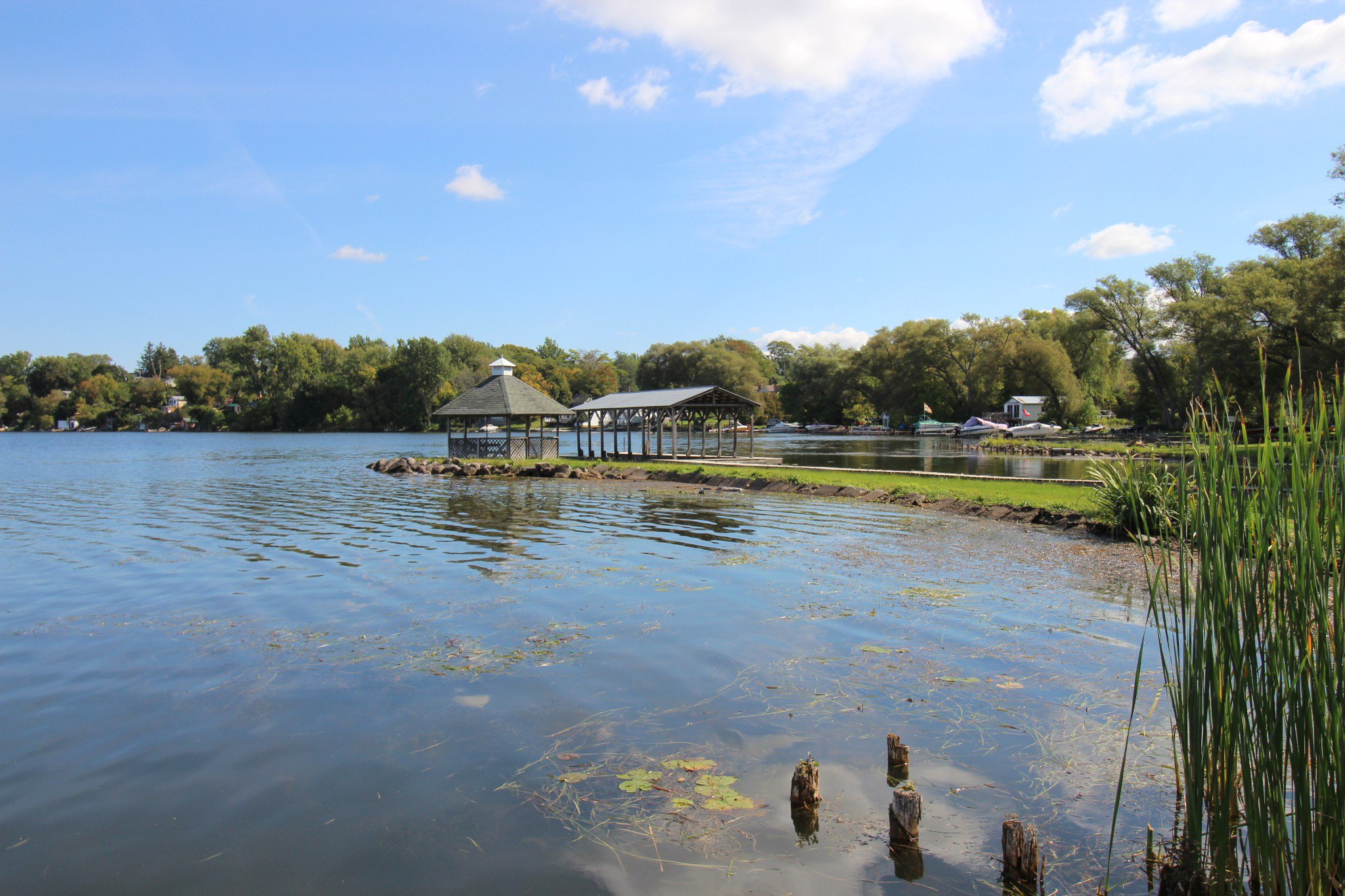 Photo 13: Photos: 6010 Rice Lake Scenic Drive in Harwood: Other for sale : MLS®# 223405