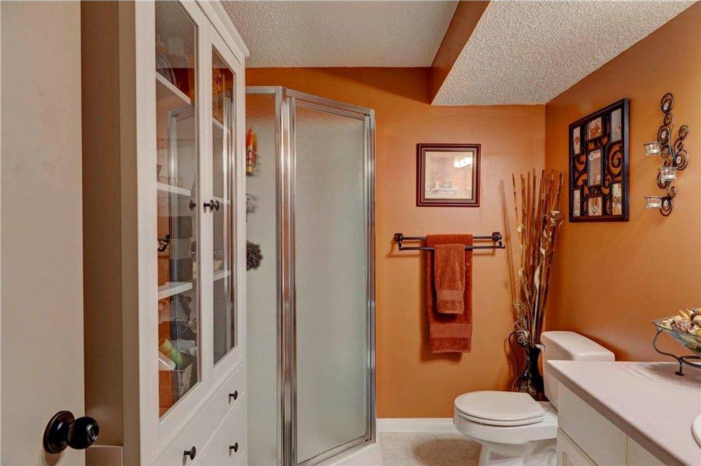 Photo 20: Photos: 110 DEERFIELD Terrace SE in Calgary: Deer Ridge House for sale : MLS®# C4123944