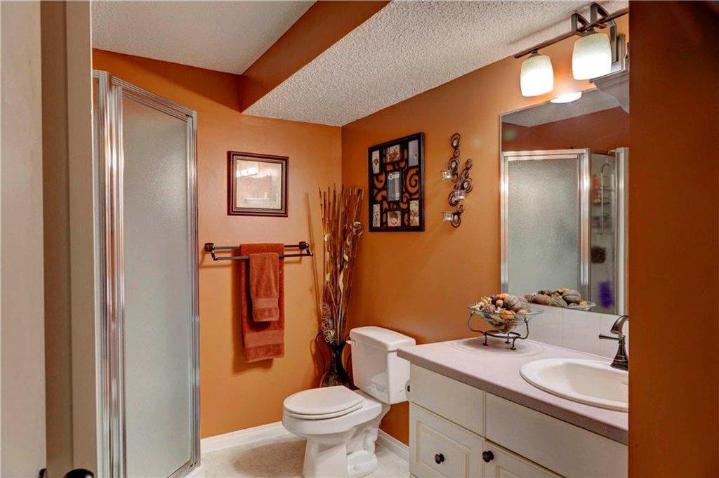 Photo 21: Photos: 110 DEERFIELD Terrace SE in Calgary: Deer Ridge House for sale : MLS®# C4123944
