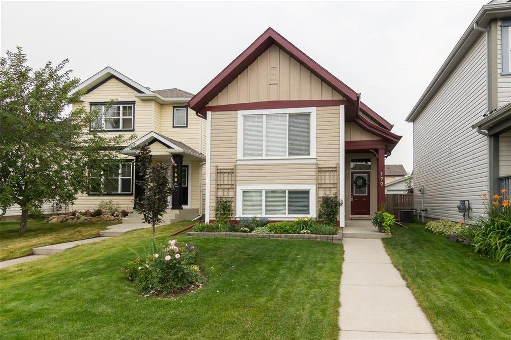 Main Photo: 172 COPPERFIELD Rise SE in Calgary: Copperfield Detached for sale : MLS®# C4201134
