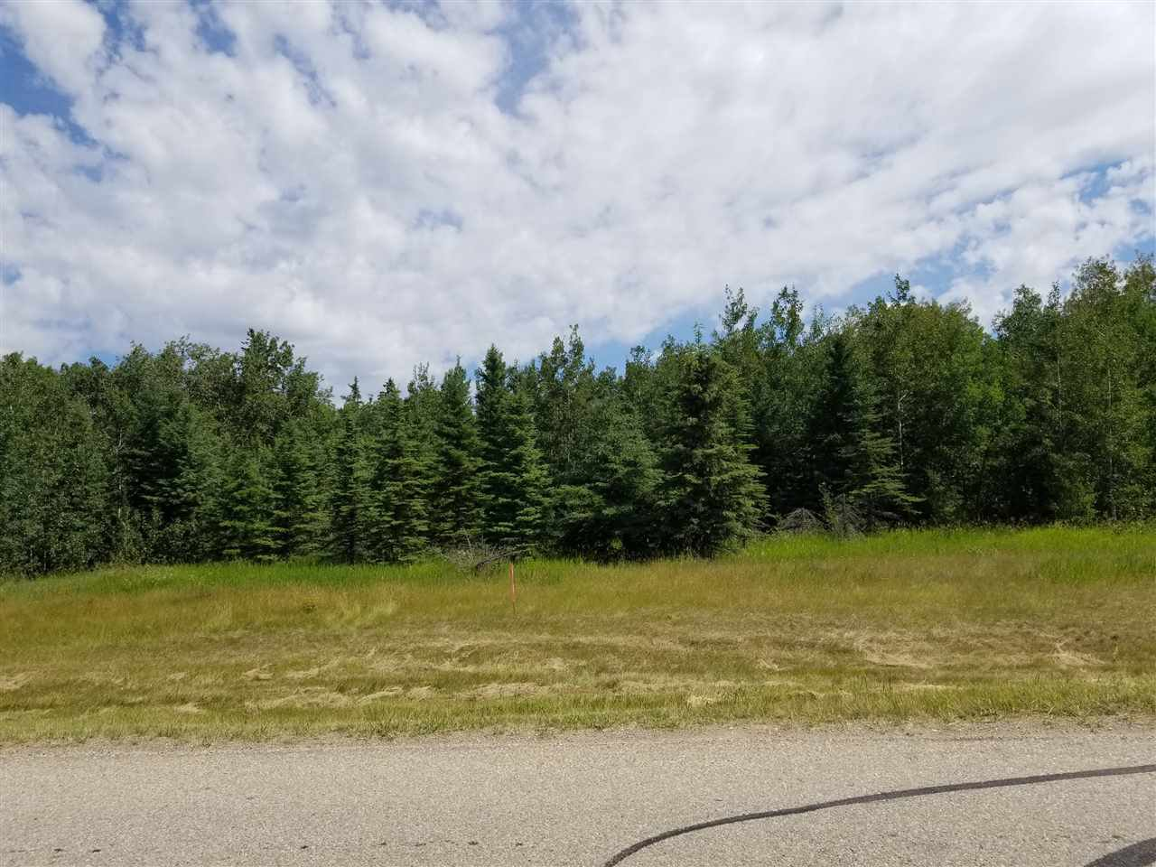 Main Photo: #43-25527- Twp Road 511A Road: Rural Parkland County Rural Land/Vacant Lot for sale : MLS®# E4138090