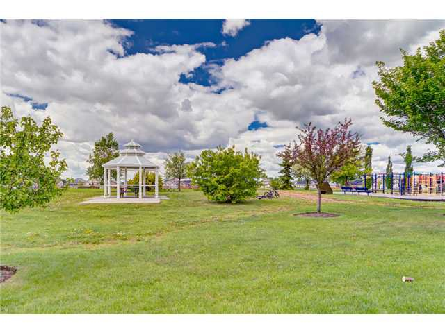 Photo 19: Photos: 12 HILLVIEW Road: Strathmore Residential Detached Single Family for sale : MLS®# C3620193