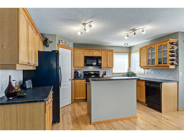 Photo 3: Photos: 12 HILLVIEW Road: Strathmore Residential Detached Single Family for sale : MLS®# C3620193