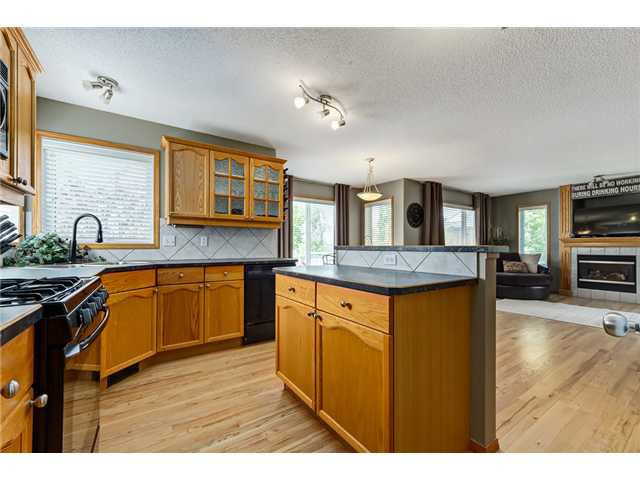 Photo 2: Photos: 12 HILLVIEW Road: Strathmore Residential Detached Single Family for sale : MLS®# C3620193