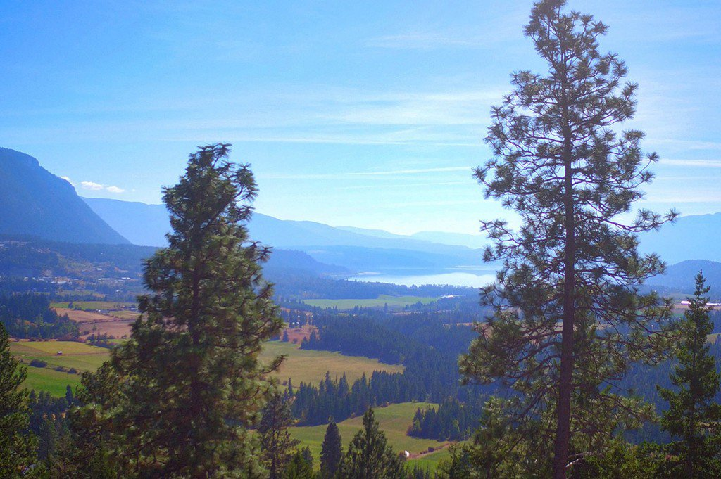 Photo 17: Photos: Lot 4 Recline Ridge Road in Tappen: Land Only for sale : MLS®# 10176926