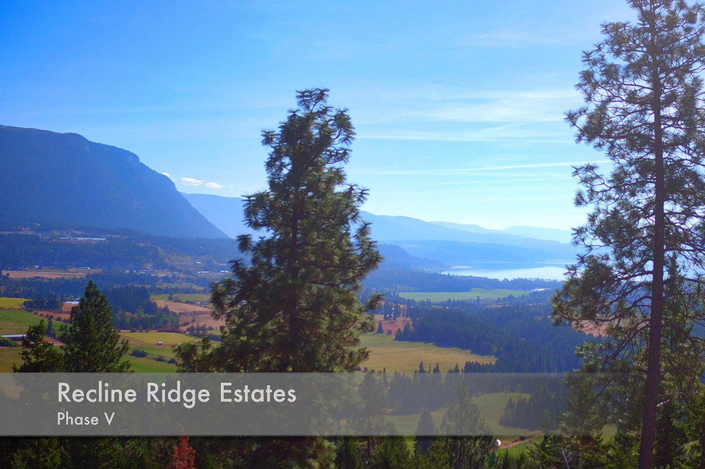 Photo 4: Photos: Lot 4 Recline Ridge Road in Tappen: Land Only for sale : MLS®# 10176926
