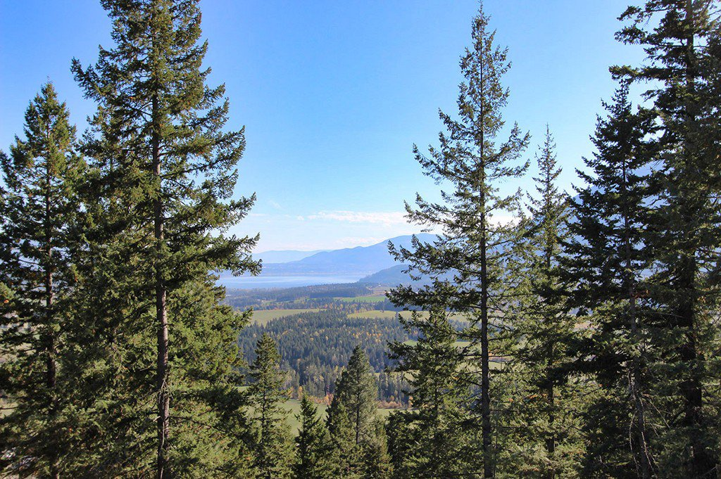 Photo 20: Photos: Lot 4 Recline Ridge Road in Tappen: Land Only for sale : MLS®# 10176926