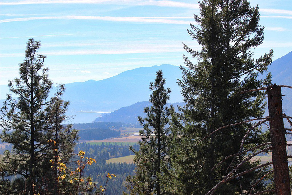 Photo 10: Photos: Lot 4 Recline Ridge Road in Tappen: Land Only for sale : MLS®# 10176926