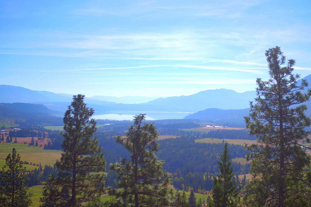 Photo 26: Photos: Lot 4 Recline Ridge Road in Tappen: Land Only for sale : MLS®# 10176926