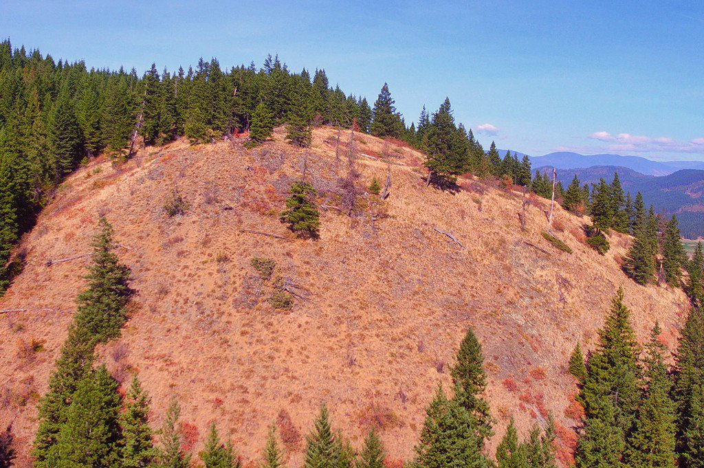 Photo 15: Photos: Lot 4 Recline Ridge Road in Tappen: Land Only for sale : MLS®# 10176926