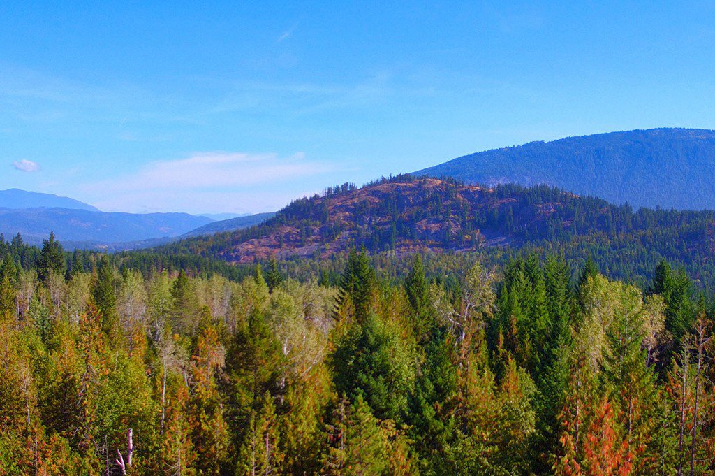 Photo 22: Photos: Lot 4 Recline Ridge Road in Tappen: Land Only for sale : MLS®# 10176926