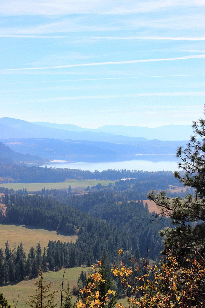 Photo 8: Photos: Lot 4 Recline Ridge Road in Tappen: Land Only for sale : MLS®# 10176926