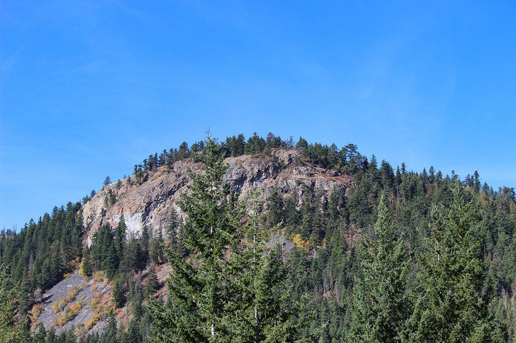 Photo 12: Photos: Lot 4 Recline Ridge Road in Tappen: Land Only for sale : MLS®# 10176926