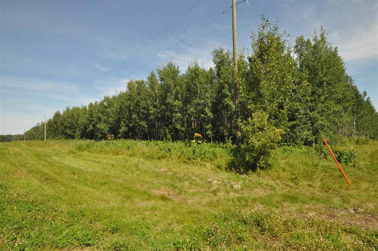 Photo 4: Photos: TBD Crystal Key Crescent: Rural Wetaskiwin County Rural Land/Vacant Lot for sale : MLS®# E4209529