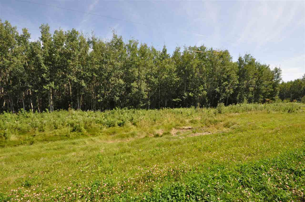 Photo 5: Photos: TBD Crystal Key Crescent: Rural Wetaskiwin County Rural Land/Vacant Lot for sale : MLS®# E4209529