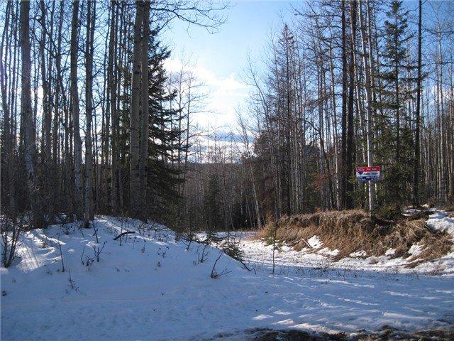 Main Photo: 6 BERYL PRAIRIE Road: Hudsons Hope Land for sale (Fort St. John (Zone 60))  : MLS®# N234174