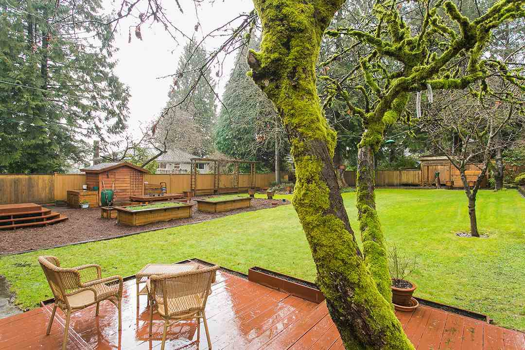 Photo 19: Photos: 1561 MERLYNN Crescent in North Vancouver: Westlynn House for sale : MLS®# R2143855