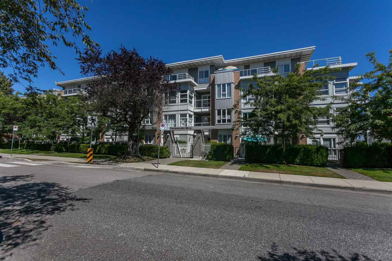 """Main Photo: 211 6198 ASH Street in Vancouver: Oakridge VW Condo for sale in """"THE GROVE"""" (Vancouver West)  : MLS®# R2193582"""