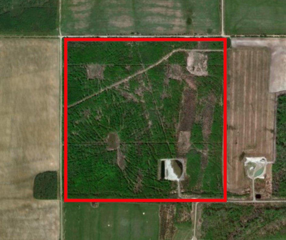 "Main Photo: 250 ROAD in Fort St. John: Fort St. John - Rural E 100th Land for sale in ""CECIL LAKE"" (Fort St. John (Zone 60))  : MLS®# R2321158"