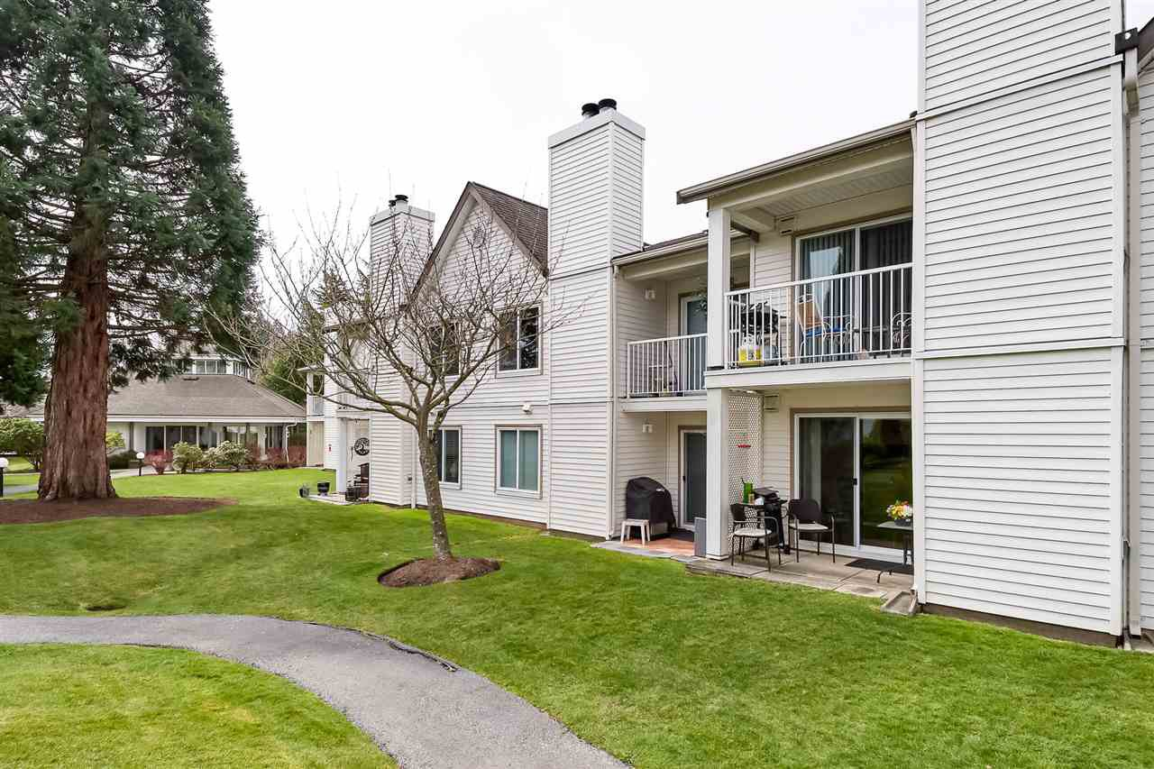 Main Photo: 11 12915 16 Avenue in Surrey: Crescent Bch Ocean Pk. Townhouse for sale (South Surrey White Rock)  : MLS®# R2352172