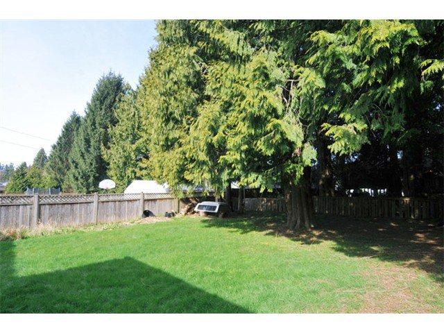 Photo 9: Photos: 21081 119TH Avenue in Maple Ridge: Southwest Maple Ridge House for sale : MLS®# V1109671