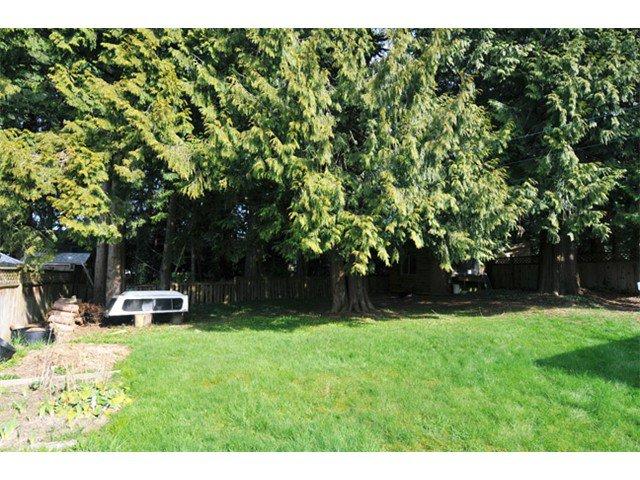 Photo 10: Photos: 21081 119TH Avenue in Maple Ridge: Southwest Maple Ridge House for sale : MLS®# V1109671