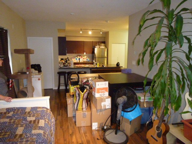 """Photo 10: Photos: 111 7337 MACPHERSON Avenue in Burnaby: Metrotown Condo for sale in """"CADENCE"""" (Burnaby South)  : MLS®# R2027010"""