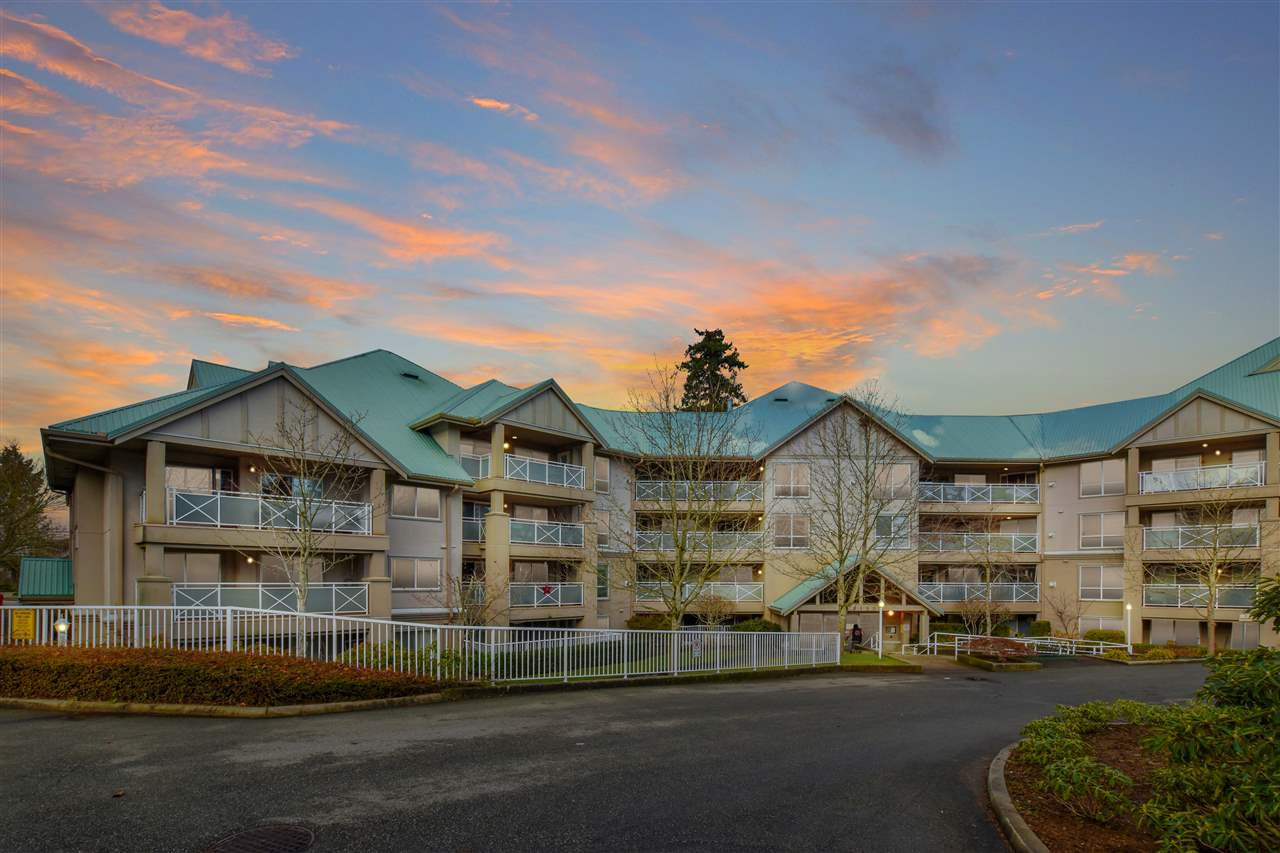 """Main Photo: 402 15150 29A Avenue in Surrey: King George Corridor Condo for sale in """"The Sands II"""" (South Surrey White Rock)  : MLS®# R2523039"""
