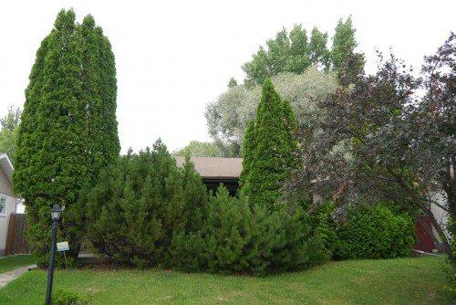 Main Photo: 1079 Chancellor Drive in Winnipeg: Fort Garry / Whyte Ridge / St Norbert Residential for sale (South Winnipeg)  : MLS®# 1315689