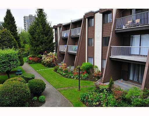 Main Photo: 214 3911 Carrigan Crt in Burnaby: Home for sale