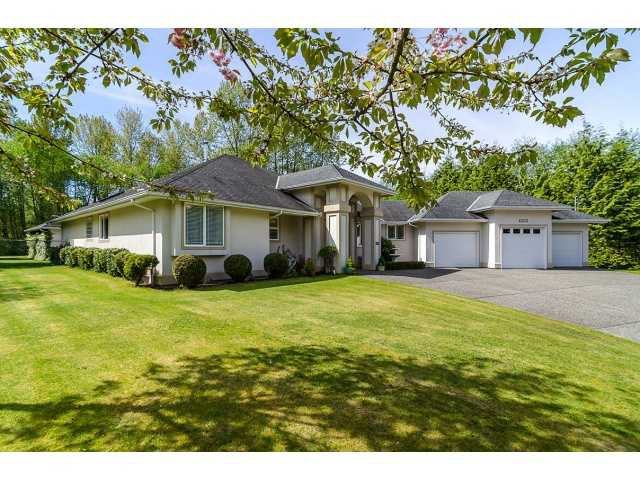 Main Photo: 25040 130A AV in Maple Ridge: Websters Corners House for sale : MLS®# V1004078