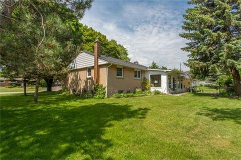 Photo 10: Photos: 15 Ferguson Avenue in Whitby: Brooklin House (Bungalow) for sale : MLS®# E3214981