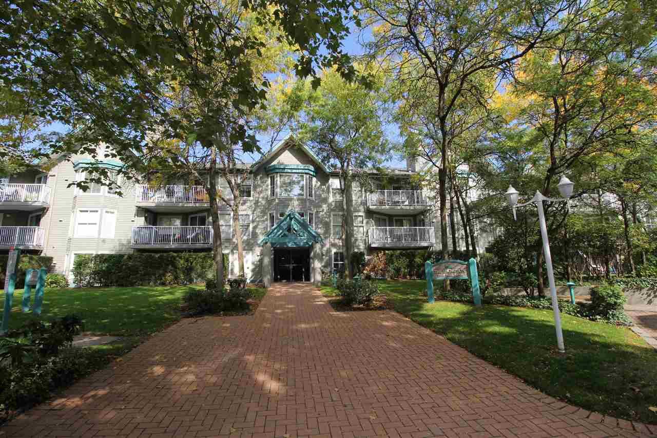 """Main Photo: 319 15110 108TH Avenue in Surrey: Guildford Condo for sale in """"Riverpointe"""" (North Surrey)  : MLS®# R2310519"""