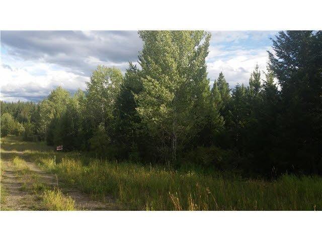 Main Photo: LOT C PARK Place: Lac la Hache Land for sale (100 Mile House (Zone 10))  : MLS®# R2368590