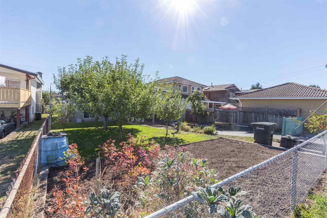 Photo 17: Photos: 5427 NEVILLE Street in Burnaby: South Slope House for sale (Burnaby South)  : MLS®# R2108235
