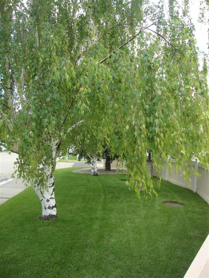 Photo 7: Photos: 306 11620 9A Avenue in Edmonton: Zone 16 Condo for sale : MLS®# E4164657