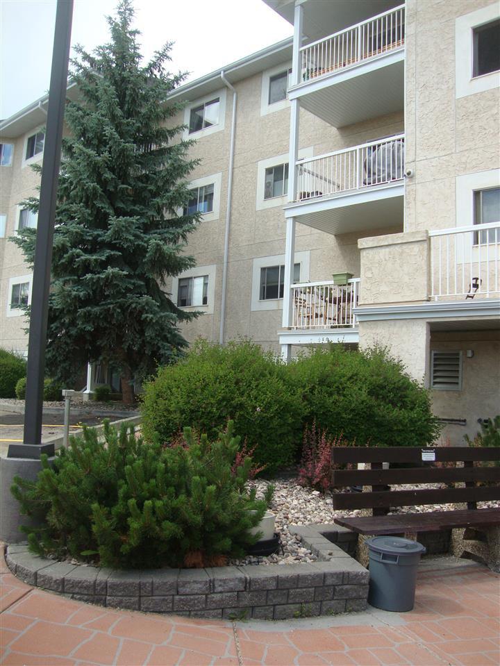 Photo 4: Photos: 306 11620 9A Avenue in Edmonton: Zone 16 Condo for sale : MLS®# E4164657