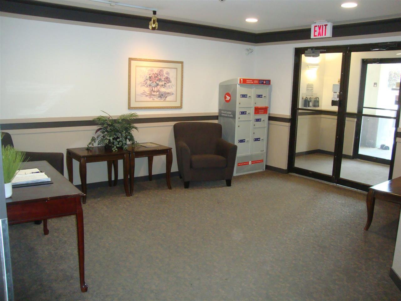 Photo 9: Photos: 306 11620 9A Avenue in Edmonton: Zone 16 Condo for sale : MLS®# E4164657