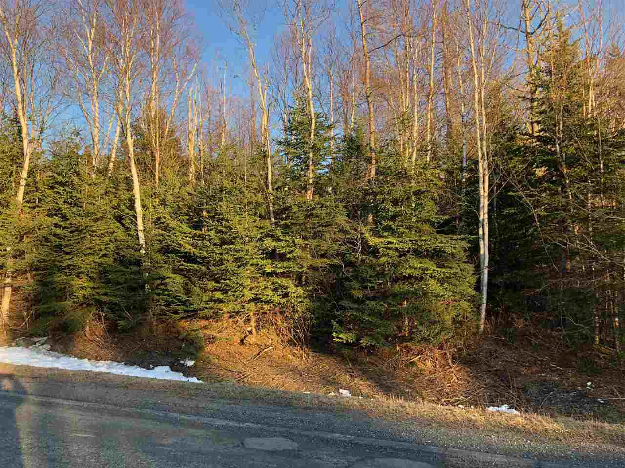 Main Photo: Lot 8 Brickyard Road in Mira Gut: 211-Albert Bridge / Mira Vacant Land for sale (Cape Breton)  : MLS®# 202006918