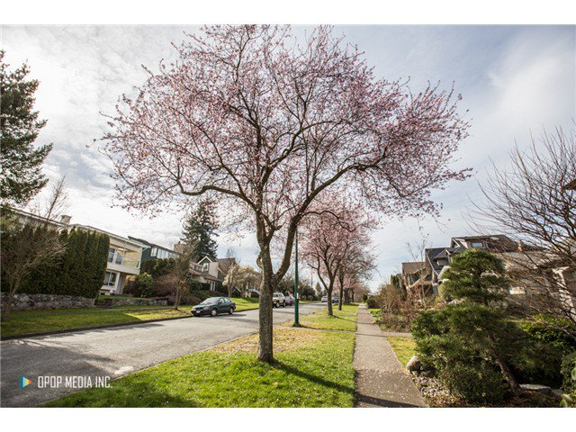 "Photo 5: Photos: 3691 W 23RD Avenue in Vancouver: Dunbar House for sale in ""DUNBAR"" (Vancouver West)  : MLS®# V1109810"
