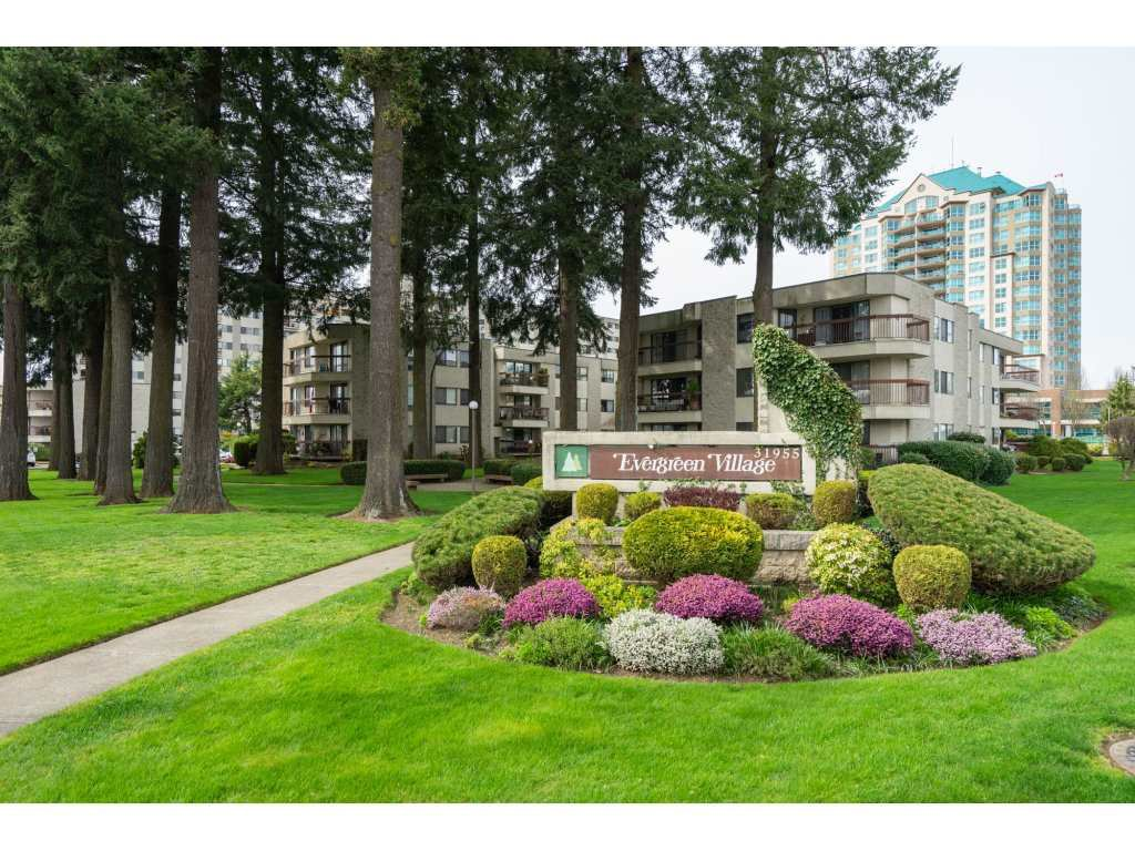 "Main Photo: 307 31955 OLD YALE Road in Abbotsford: Abbotsford West Condo for sale in ""Evergreen Village"" : MLS®# R2288817"