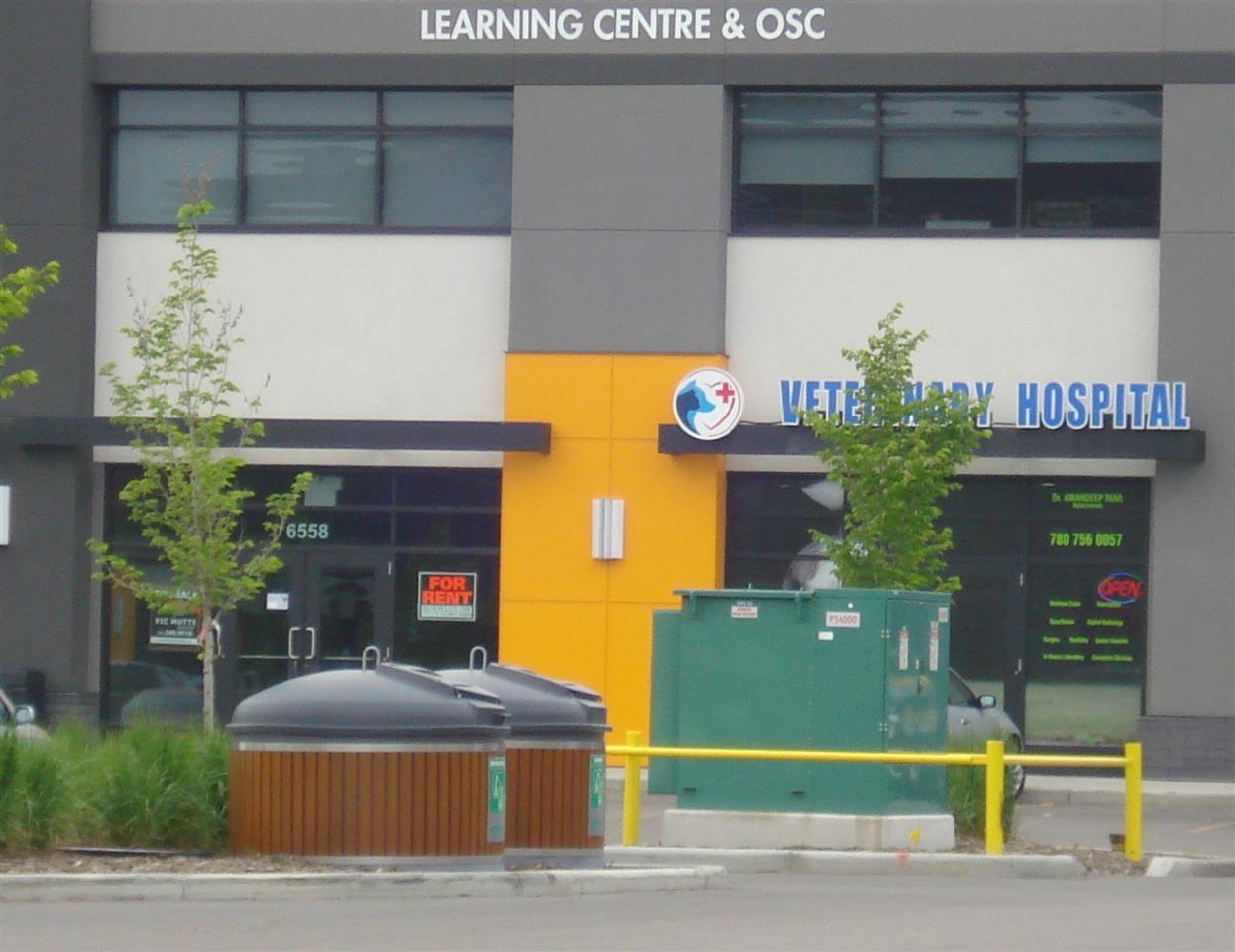 Main Photo: 00 00 in Edmonton: Zone 03 Business for sale : MLS®# E4195943