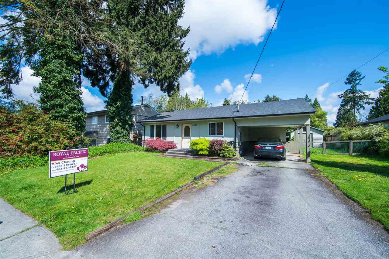 Main Photo: 21137 WICKLUND Avenue in Maple Ridge: Northwest Maple Ridge House for sale : MLS®# R2164262