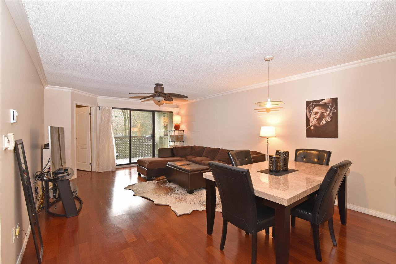 Main Photo: 205 1210 PACIFIC STREET in Coquitlam: North Coquitlam Condo for sale : MLS®# R2235055