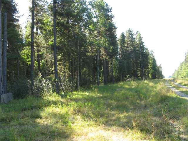 Main Photo: WEST OF BOTTREL in COCHRANE: Rural Rocky View MD Rural Land for sale : MLS®# C3492220