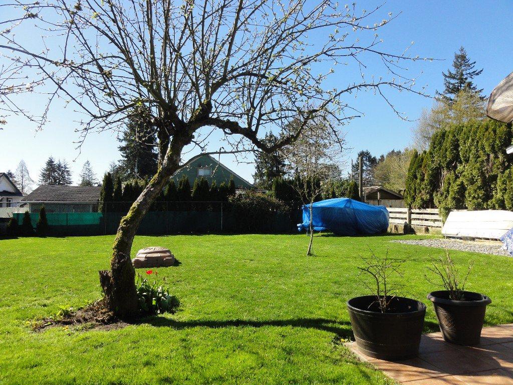 Photo 20: Photos: 17338 58A Avenue in Surrey: Cloverdale BC House for sale (Cloverdale)  : MLS®# R2050224
