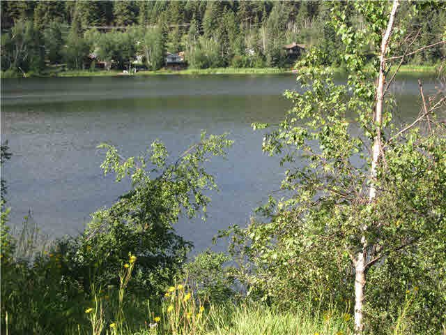 Main Photo: LOT 5 DUCKWORTH LAKE: McLeese Lake Land for sale (Williams Lake (Zone 27))  : MLS®# N246849