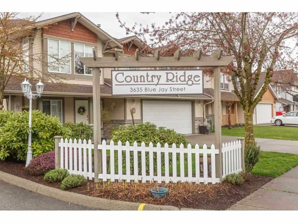 """Main Photo: 7 3635 BLUE JAY Street in Abbotsford: Abbotsford West Townhouse for sale in """"COUNTRY RIDGE"""" : MLS®# R2384150"""